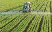 智能农场项目希望降低温室气体排放并提高农业效率