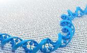 我们的基因组中是否存在MS ALS和精神分裂症的病毒代理