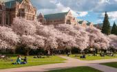 华盛顿大学的大事件安排