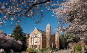 华盛顿大学举办高中生年度艺术强化课程
